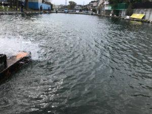 朝霞ガーデン1号池の水車