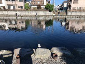 朝霞ガーデンのルアー池