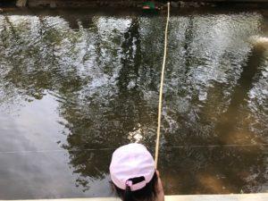 つくば園の疑似餌釣り