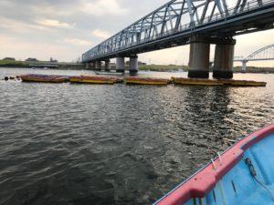 江戸川のボートハゼ釣り